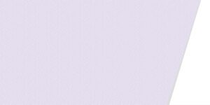 紗綾形_purple